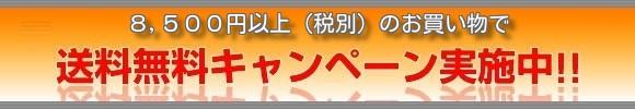 3500円以上のお買い物で送料無料!